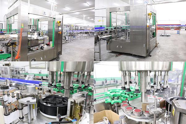 Hot Melt Gule Labeling Machine